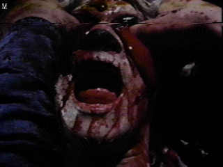 from THE EVIL DEAD